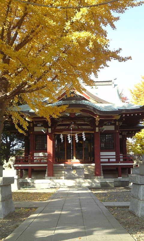 ★八坂神社と銀杏